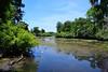 Looking down stream of the Hillsbrough River (M. Coppola) Tags: florida hillsborough lettucelakecountypark