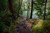 DSC_9477_a (Julysha) Tags: azores travel 2014 sãomiguel portugal acr lake lagoadocongro forest crater d800e nikkor142428
