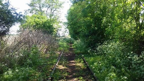 Spoor bij station Oudelande