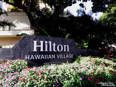 Hawaii_2017_0786 (Christen Ann Photography) Tags: 2017 bustourwithosricchau hawaii hawaii2017 hawaiicon hiltonhawaiianvillage holidays honolulu november2017 ohau usa