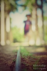 Traveling in an express train (Mister Blur) Tags: low pointofview shallow depthoffield dof boy running happiness run train track hacienda ochil yucatán méxico bokeh forlife blur background nikon d7100 35mm snapseed rubén rodrigo fotografía rail profundidaddecampo