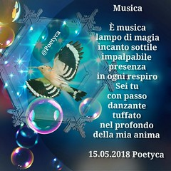 Musica (Poetyca) Tags: featured image immagini e poesie sfumature poetiche poesia
