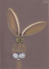 Curly Hare. (Klaas van den Burg) Tags: hare funnylooking ears whiskers pencil color brownpaper