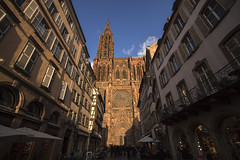 NH0A1027s (michael.soukup) Tags: strasbourg france alsace minster catholicchurch cathedral architecture gothic spire tower façade church notredame rheinland nave apse buttress rosewindow sunset lights cityscape citylights city portal stainedglass exterior münster dom skyline building sky dusk