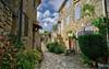 Petite ruelle à Simiane-la-Rotonde. (2) (Cri.84) Tags: village maison rue alpesdehauteprovence provence simianelarotonde