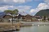 Seefeld - Tirol (Ernst_P.) Tags: aut österreich seefeld seefeldintirol tirol see wasser tier vogel schwan sigma 24105mm f40 landscape tyrol austria autriche lago lake paisaje agua water swan cisne