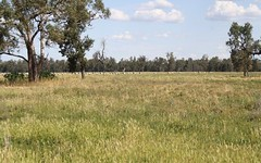 2554 East Coonamble Rd, Curban NSW
