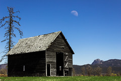 Out of this Barn (MB Gibson Photography) Tags: moon barn spring sunnyday sunshine sun blue sky green grass dead tree old halfmoon camels hump mountain british columbia canada vintage