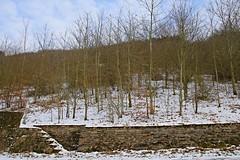_MG_9263a - 03.03.2018 (hippo1107) Tags: winter märz march schnee snow kalt cold eis ice schoden canoneos70d canon eos 70d