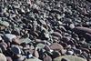 pebblesIMG_6100 (mandyerush) Tags: pebbles seaweed sea minch isle skye otterburn driftwood lesser celadine crustacean beach fairy