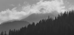 Cloudy Alps (impix) Tags: alps mountain mountains switzerland black white blackandwhite trees forest graubünden clouds wolken sky himmel