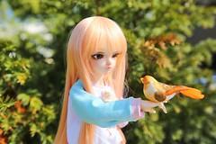[May of Dolls 5/31] - Freedom ♥ (SunShineRu) Tags: mnf minifee miyu slim msd fairyland bjd ball jointed doll dolls may freedom bird