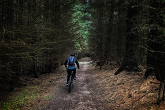 Tunnel of Silence (Gee & Kay Webb) Tags: mtb mountainbike bike bicycle cycling riding outdoors forest trails trees