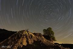 Star Trails At Caprock Canyon_MG_1573 (Alfred J. Lockwood Photography) Tags: alfredjlockwood nature nightscape startrails lightpainting goalzerolighthouseminilantern northstar sandstone junipertree caprockcanyonstatepark nightsky texas spring