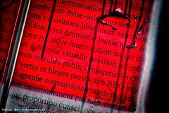 _DSC2052_DR (Pascal Rey Photographies) Tags: lyon lugdunum streetart street inthestreets strassen strasse danslesrues arturbain urbanphotography urbanart stencils stencil popart pop pastedpaper papiercollé graffitis graffs graffik graffiti photograffik pascalrey pascalreyphotographies nikon d700 aurorahdr aurora photographiecontemporaine photos photographie photography photographiedigitale photographienumérique photographieurbaine walls wallpaintings walldrawings écritsurlemur