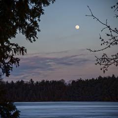 Blue Moon (Faron Dillon) Tags: moon sunset lake evening canon blue hour 5ds ontario bondlake richmondhill cool dark night