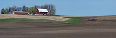In the Field - Explore #63 - THANKS! (Walt Polley) Tags: 28300mmf3556nikkor copyright©2018waltpolley dundas minnesota nikond500