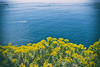Cinque Terre 2018 (Pasquale Vitale) Tags: cinqueterre laspezia portovenere portofino levanto