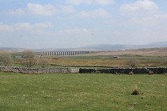 IMG_8897 (Lady Science) Tags: ribblehead ribbleheadviaduct northyorkshire