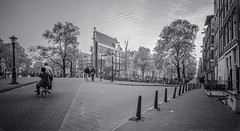 Amsterdam Bloemgracht Prinsengracht (Michael Shoop) Tags: michaelshoop thenetherlands netherlands holland europe canon7dmarkii blackandwhite bw bicycle prinsengracht bloemgracht