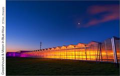 Greenhouse & Moon In Blue Hour (jwvraets) Tags: grimsby greenhouse orange violet blue orangeandblue freemanherbs soutserviceroad ssr queenelizabethway qew qe highway dawn bluehour moon halfmoon opensource rawtherapee gimp nikon d7100 nikkor1224mm