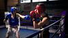 26444 - Hook (Diego Rosato) Tags: boxe boxelatina pugilato boxing nikon d700 2470mm tamron rawtherapee ring incontro match pugno punch hook gancio