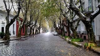 Cobbled street - Calle adoquinada