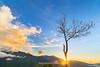 _Y2U9100.0716.Tà Xùa.Bắc Yên.Sơn La (hoanglongphoto) Tags: asia asian vietnam northwestvietnam landscape outdoor nature tree drytree morning sunrise sky clouds sierra hdr vietnamlandscape naturevietnam mountainouslandscape sunriseinthemountains canon canoneos1dx tâybắc sơnla bắcyên tàxùa phongcảnh ngoàitrời thiênnhiên buổisáng bìnhminh bầutrời mây cây câykhô dãynúi sườnnúi bìnhminhtàxùa phongcảnhtâybắc mountain phongcảnhtàxùa zeissdistagont2818ze one một đơnđộc côđơn sun mặttrời ray rays sunray tiasángmặttrời bluessky flanksmountain bầutrờixanh