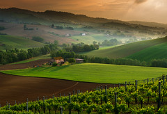 _DSC7213-1 (Giuseppe Cocchieri) Tags: landscape paesaggio primavera spring countryside campagna hill colline hills colore colori colour sunrise earth terra allaperto atmosfera green yellow giallo verde valle vallata valley light luce nature natura