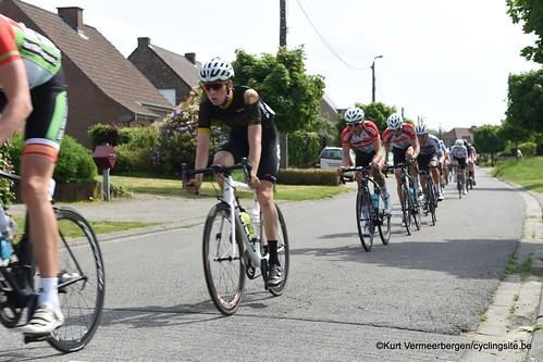 Zandhoven (487)