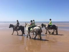 Exercising the ponies. (Bennydorm) Tags: cote costa kuste coast plage strand spiaggio playa sky iphone5s inghilterra inglaterra angleterre europe uk gb britain england cumbria silecroft may sands seaside beach riders ponies