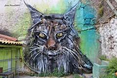 Made with garbage - Street art - Viseu.  The artist is Bordalo II. (cpscoa) Tags: bordalo viseu lixo garbage canon portugal