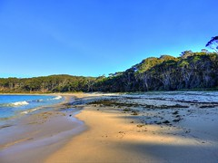 Depot Beach III (elphweb) Tags: hdr highdynamicrange nsw australia beach water lake sea ocean sand sandy tree trees forest bush wood woods waves surf
