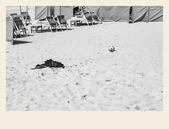Abandonné sur la plage (Napafloma-Photographe) Tags: 2018 architecturebatimentsmonuments bandw bw bâtiments france géographie hautsdefrance landscape letouquet métiersetpersonnages objetselémentsettextures pasdecalais paysages personnes techniquephoto ballon blackandwhite boutique monochrome napaflomaphotographe noiretblanc noiretblancfrance photoderue photographe plage province sable streetphoto streetphotography fr
