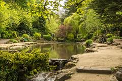 Peasholm Park (shabbagaz) Tags: 2018 a65 alpha may north park peasholm scarborough shabbagaz sony spring town yorkshire england unitedkingdom