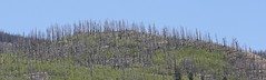 0B6A6747 (Bill Jacomet) Tags: road to durango co colorado travel trip drive 2018