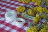 Ψίνθος (Psinthos.Net) Tags: ψίνθοσ psinthos mayday πρωτομαγιά μάιοσ μάησ άνοιξη may spring afternoon απόγευμα απόγευμαάνοιξησ ανοιξιάτικοαπόγευμα άγριαλουλούδια λουλούδια αγριολούλουδα κίτριναλουλούδια κιτρινάκια yellowflowers wildflowers flowers wreath στεφάνι μαγιάτικοστεφάνι γύρη pollen