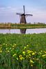 Kinderdijk in spring (Rob Schop) Tags: windmill 1650mmoss spring alblasserdam zonsondergang sunset lente sonya6000 molens flowers nederland outdoor a6000 pola kitlens kinderdijk