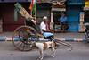 RICKSHAW. Kolkata (Cathy Le Scolan-Quéré Photographies) Tags: rickshaw indian dog chien kolkata calcutta westbengale street rue catherinelescolanquéré streetphotography drapeau