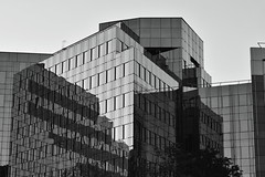 Contradiction (Robin Shepperson) Tags: monochome bw blackandwhite berlin germany black white office glass mirrors reflection angles d3400 nikon sky tree modern