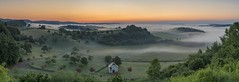 *Dawn over the Wittlich valley* (Albert Wirtz @ Landscape and Nature Photography) Tags: dawn dusk sunrise sonnenaufgang panorama panoramic albertwirtz landscape natur nature natura paesaggi paysagens tree mist fog nebbia laniebla brume bruma brouillard twilight goldenhour goldenestunde deutschland germany allemagne rheinlandpfalz rhinelandpalatinate südeifel moseleifel eifelmosel wittlich wittlichersenke wittlichvalley bergweiler finten fintenkapelle nikon d810 fintenchapel kapelle chapel wiese meadow felder fields forest wald cow animal kühe spring frühling malerisch pittoresk pittoresque