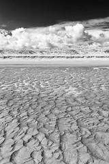 Black and White Beach (digiphill) Tags: 2018 april coast cresswell druridgebay northeast northeastcoast northumberland northumberlandcoastaonb spring sand