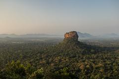 Lion's rock at sunrise seen from Pidurangala rock (Tim&Elisa) Tags: srilanka sigiriya canon pidurangalarock landscape nature lionsrock sunrise