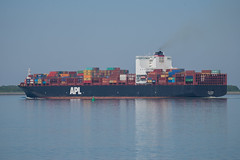 APL Miami_DVL4763 (larry_antwerp) Tags: container schip ship vessel 船 船舶 אונייה जलयान 선박 کشتی سفينة schelde 斯海尔德河 スヘルデ川 스헬더 강 رود شلده سخيلده perkpolder zeeland nederland netherlands 9597549 apl aplmiami