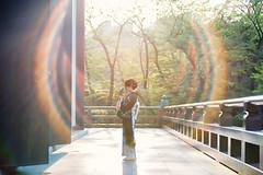 Zojoji Temple Late Afternoon Sunset (Jon Siegel) Tags: nikon d810 80200mm 28 woman beautiful kimono temple afternoon flare sunset tokyo japan japanese people zojojitemplehamamatsucho zojojitemple hamamatsucho