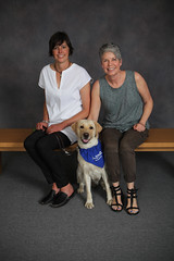 Cherie (Guide Dogs for the Blind) Tags: breeder