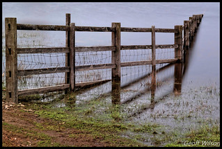 Fading Fence