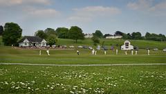 Knypersley Cricket Club daisies (PentlandPirate of the North) Tags: cricket knypersley biddulph staffordshire sport pavillion scoreboard catch daisies english england britain grassrootscricket