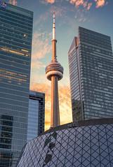 Framing, Toronto (reinaroundtheglobe) Tags: