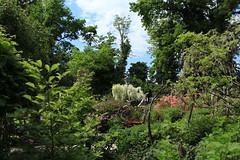 Jardin instinctif (bulbocode909) Tags: vaud suisse noville grangette jardininstinctif jardins arbres végétation fleurs nature printemps vert bleu rouge